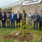 """Başkan Görgülüoğlu """"Orman Haftası"""" Etkinliğine katıldı.!"""